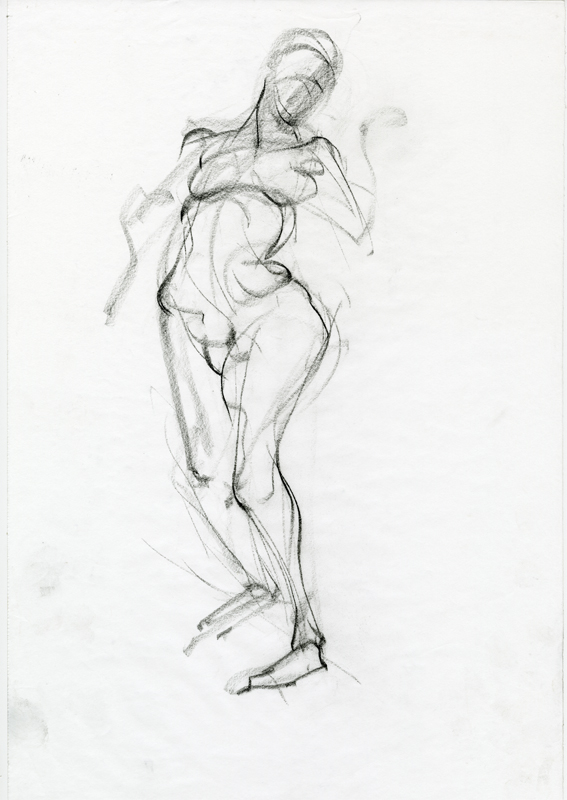 fig drawing 1